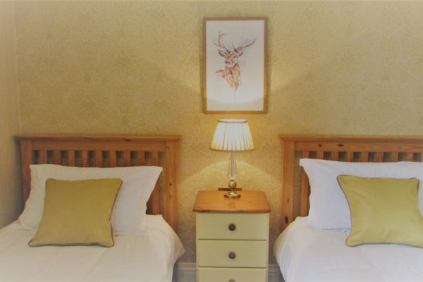 Twin, en-suite bedroom, great for sharing with friends